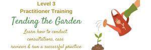 Bach Flower Practitioner Training - LIVE ONLINE
